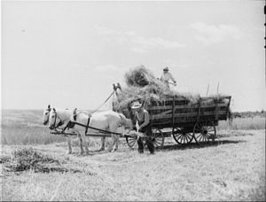 people on a hay wagon drawn by two horses