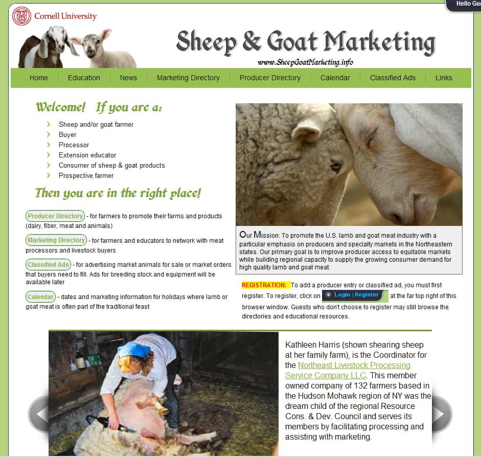 Marketing Help for Sheep & Goat Farmers - Cornell Small Farms