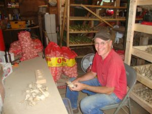 Darren Maum sorts his harvested produce. Photo by Darren Maum
