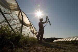 Fishbowl Farm, Bowdoinham, Maine Photographer: Bridget Besaw for Maine Farmland Trust