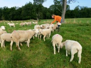 Anna and her flock. Photo by  Georgia Ranney