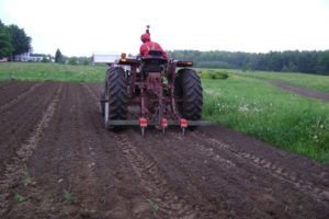 A Yeomans shank can be used for strip tillage and breaking up compacted soil layers. Photo by Ryan Maher.