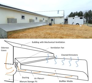 Figure 1: Photo and generalized schematic of a biofilter designed to simultaneously treat barn ventilation fans and manure pit emissions from a pig nursery barn in MN. The performance of this biofilter was continuously monitored by the author (seen on the biofilter) using the instrument trailer in the background. (Photo by J. P. Oliver, Cornell)