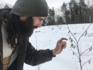 Man inspecting seedling.