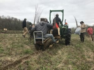 Planting trees on tractor.