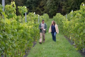 two people walking in a vineyard