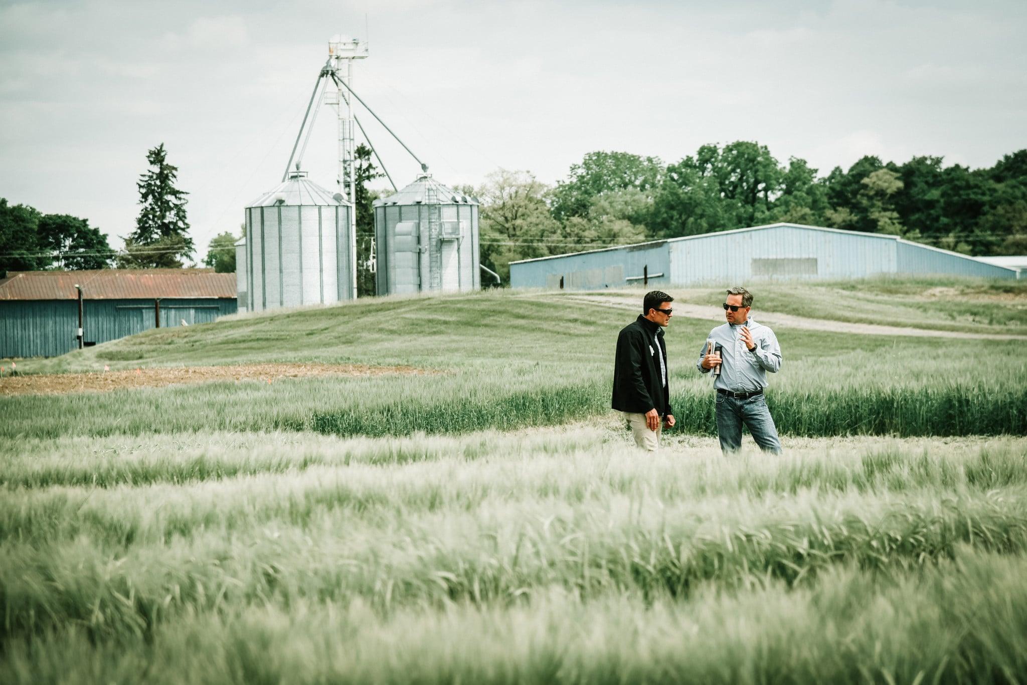 two people standing in a grain field