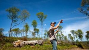 Aaron-Wightman-Arnot-Research-Sugarbush-maple