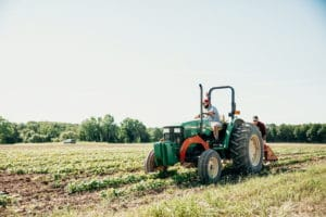 Person driving tractor in green field