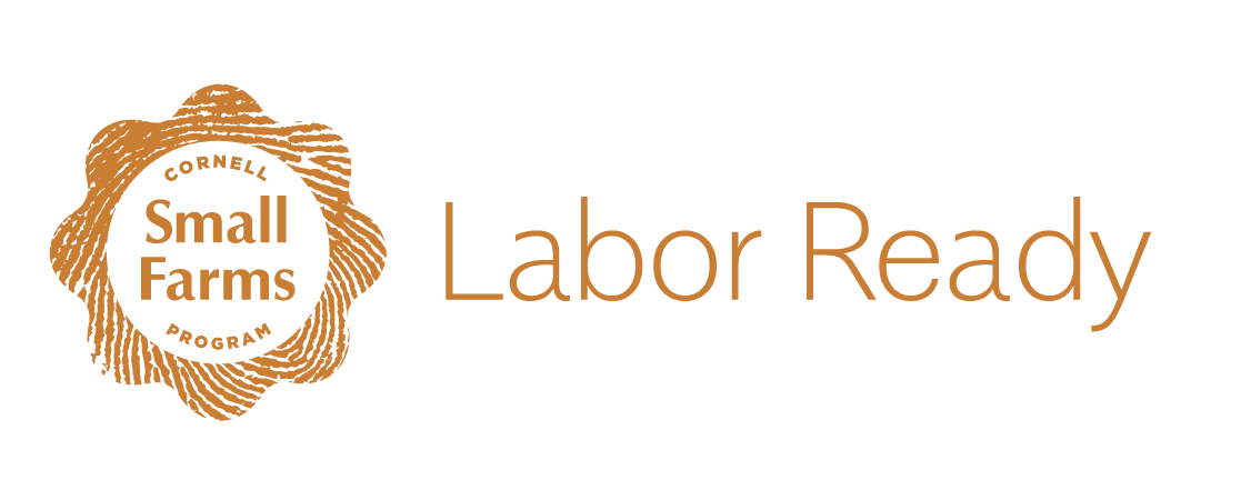 Labor Ready - logo