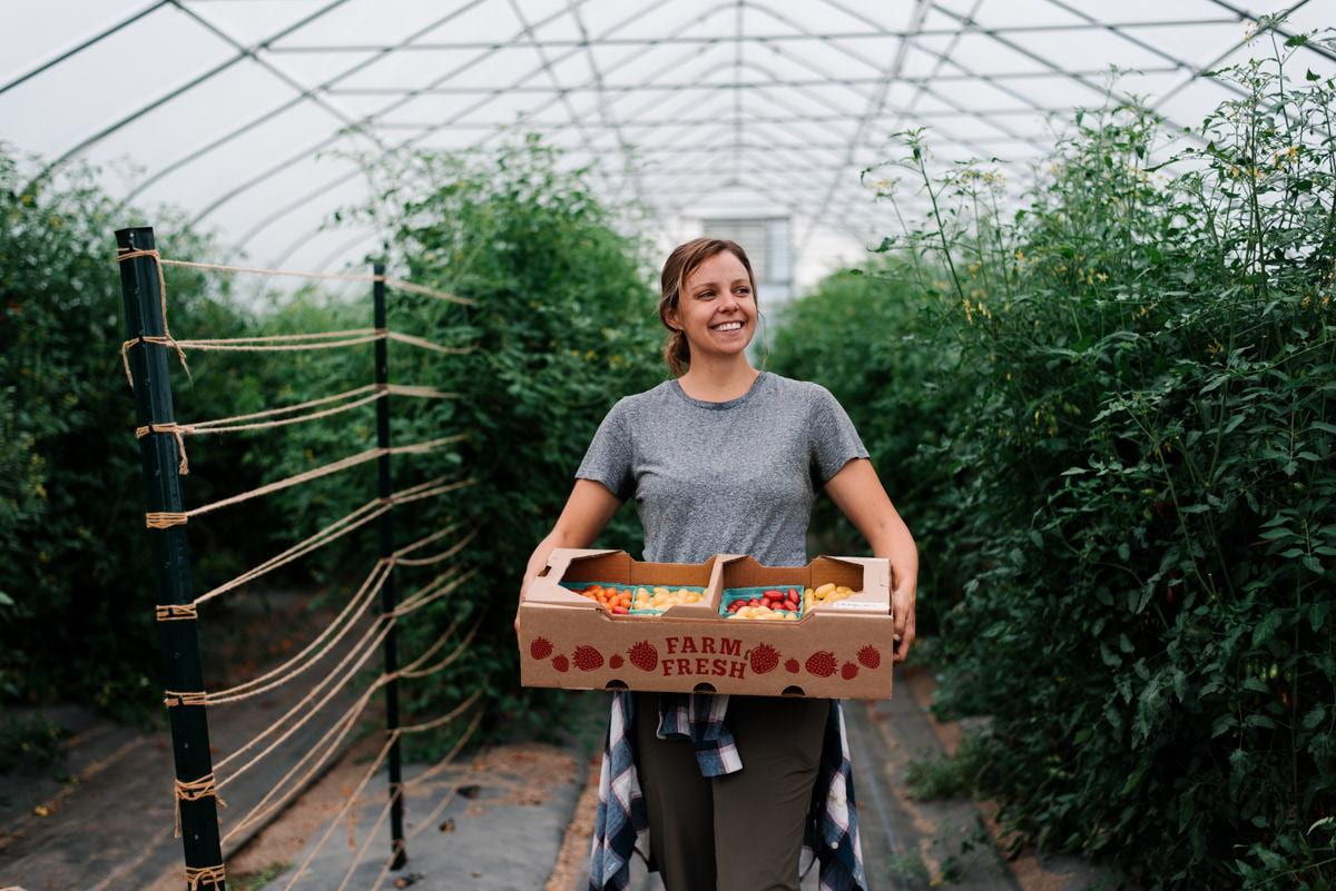 a person stands in a greenhouse holding a box of tomatoes