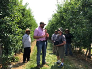 Mario Miranda Sazo and Master Class graduate Luis Garza stand in orchard talking