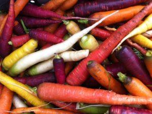 fall sfq diverse carrots 2019