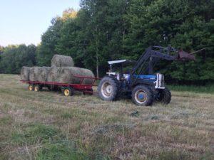 hauling heavy loads hay wagon rich taber
