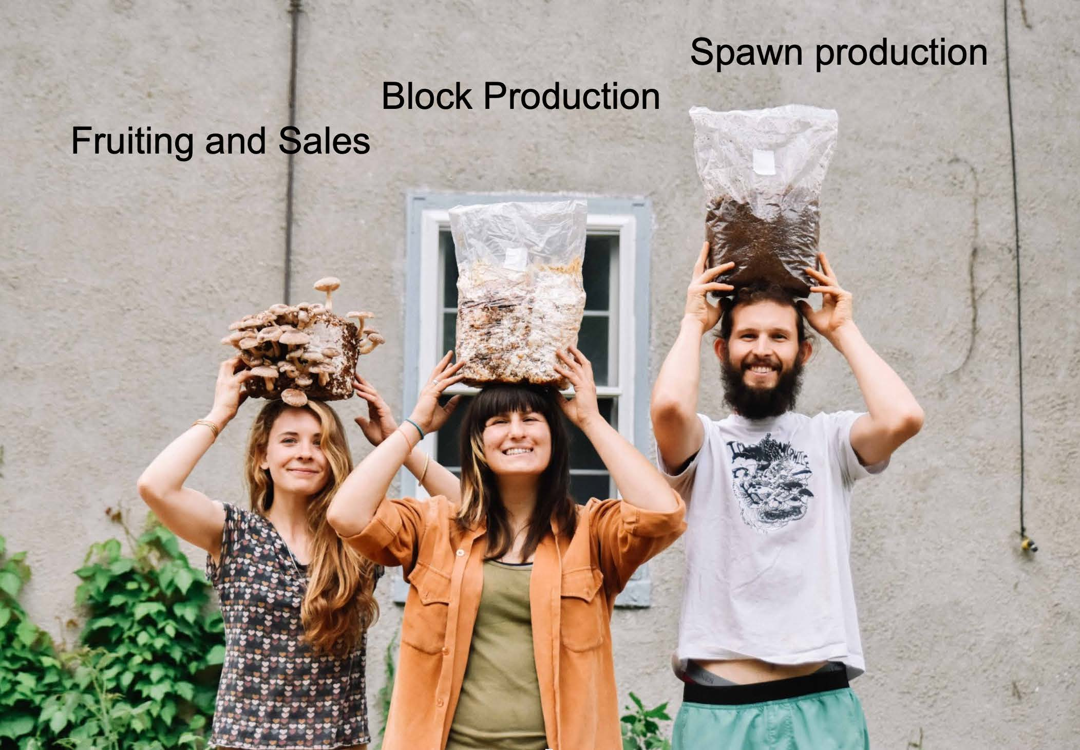 The three types of production methods are spawn, blocks, and fruiting sales.