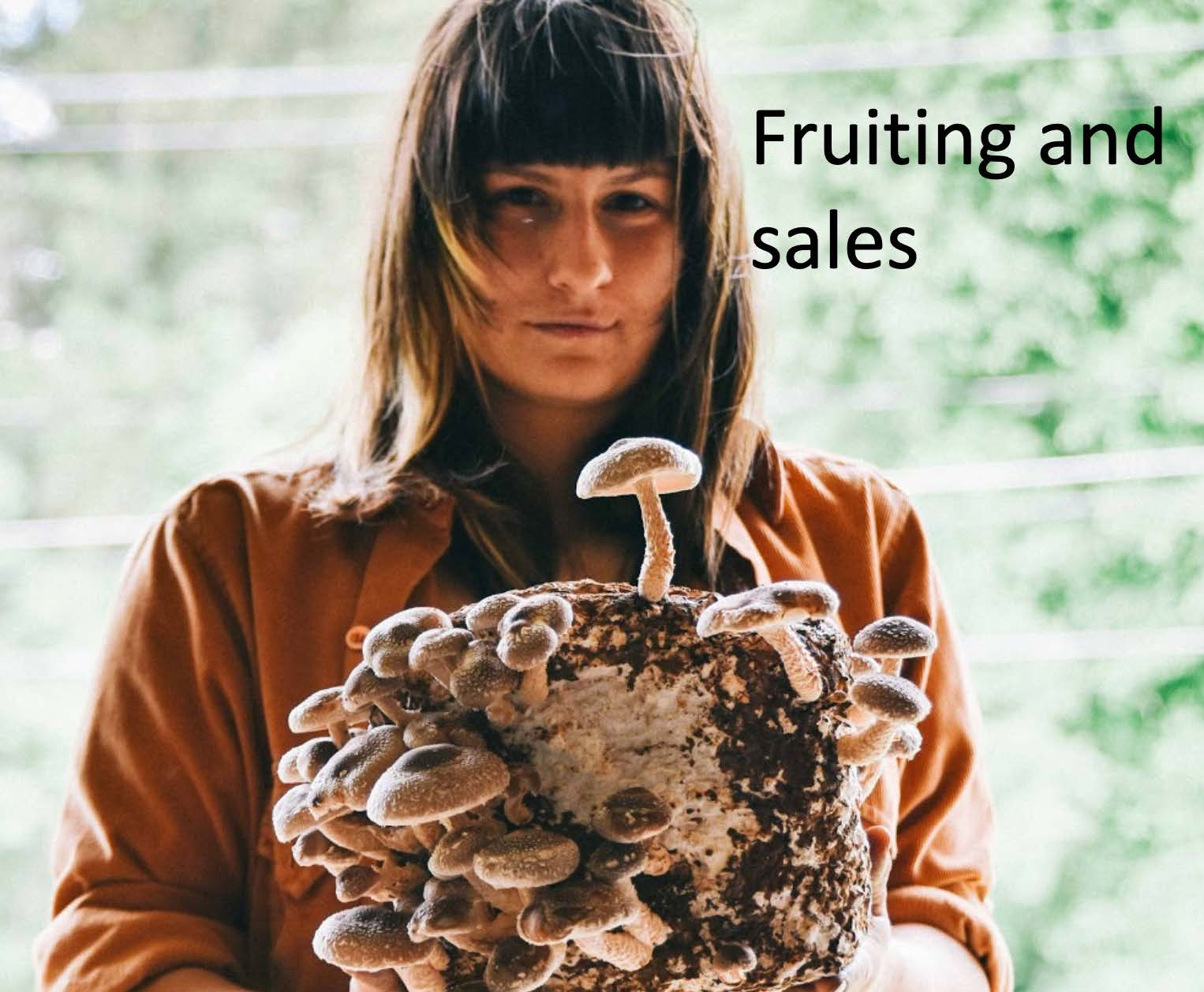 Fruiting and Sales