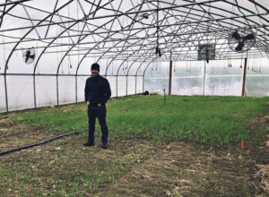 A pleasant young man smiles inside a greenhouse with a cover crop of triticale behind him.