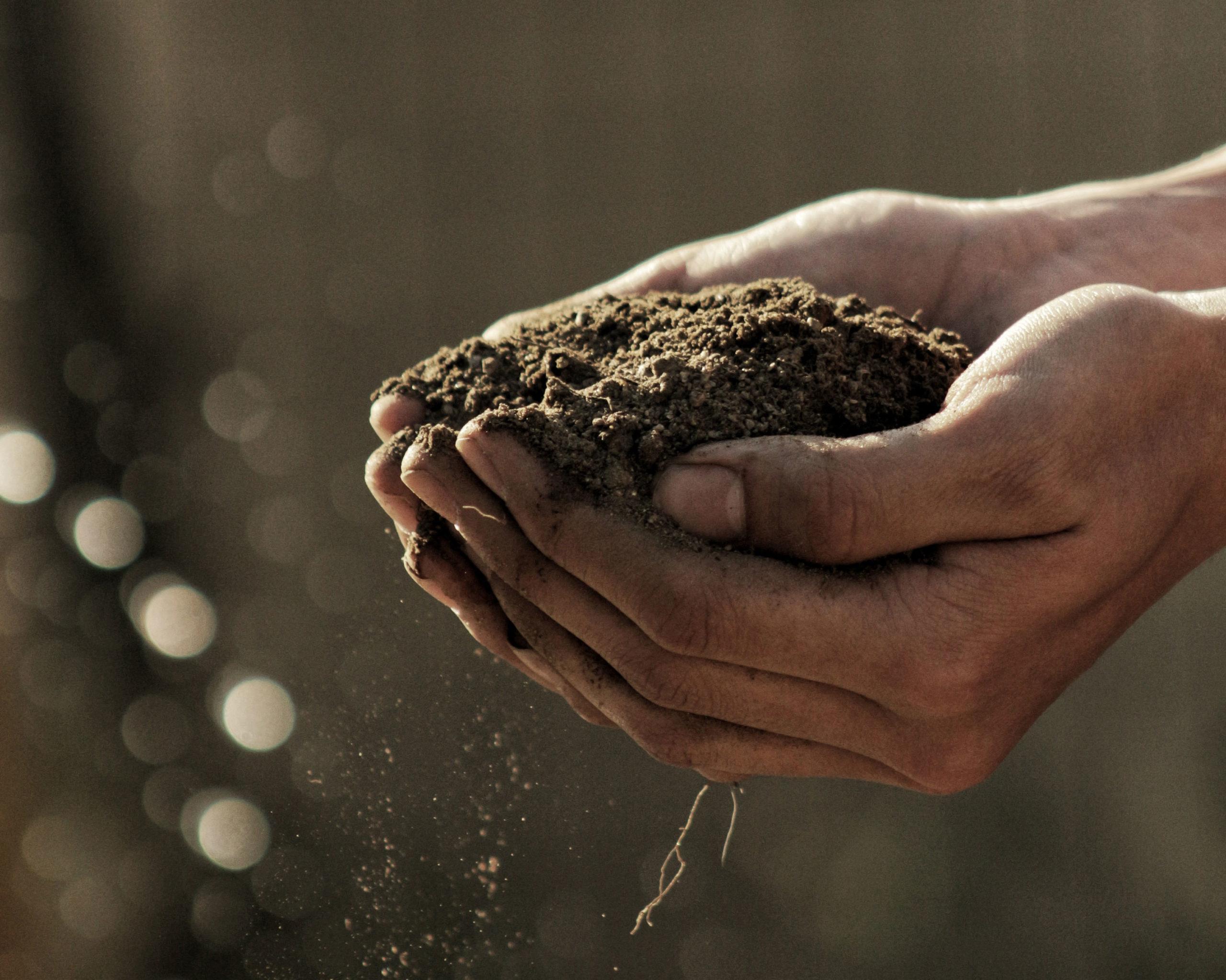 farm-hands-soil-unsplash